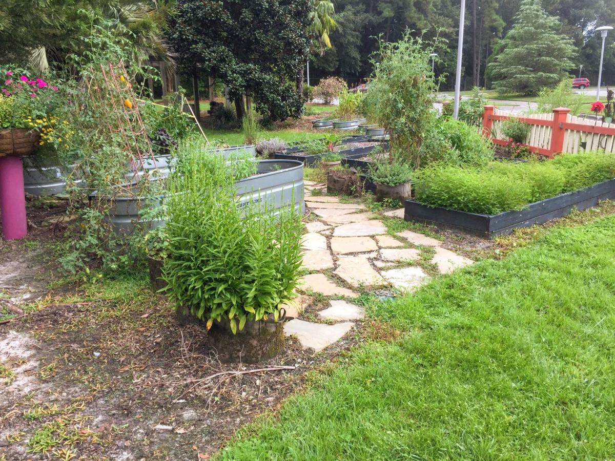Expert Landscapers Shared Some Suggestions To Enhance Landscaping
